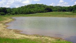 Open Water Component of Created Wetlands